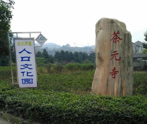 现在的村名茶元寺